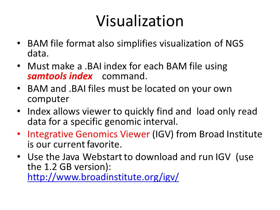 Visualization BAM file format also simplifies visualization of NGS data.