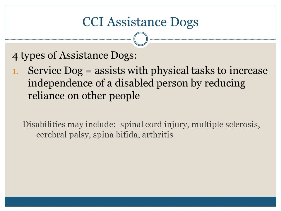 CCI Assistance Dogs 4 types of Assistance Dogs: 1.