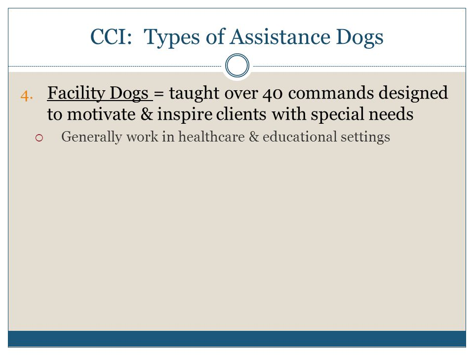 CCI: Types of Assistance Dogs 4.
