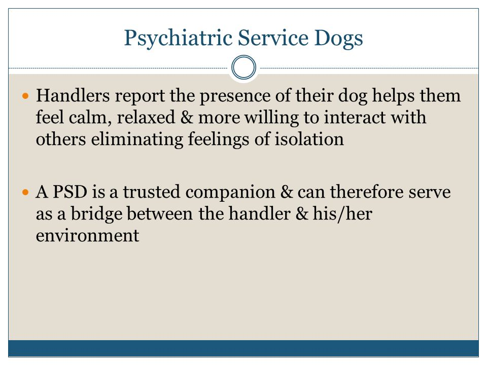 Psychiatric Service Dogs Handlers report the presence of their dog helps them feel calm, relaxed & more willing to interact with others eliminating feelings of isolation A PSD is a trusted companion & can therefore serve as a bridge between the handler & his/her environment