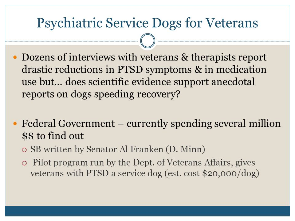 Psychiatric Service Dogs for Veterans Dozens of interviews with veterans & therapists report drastic reductions in PTSD symptoms & in medication use b