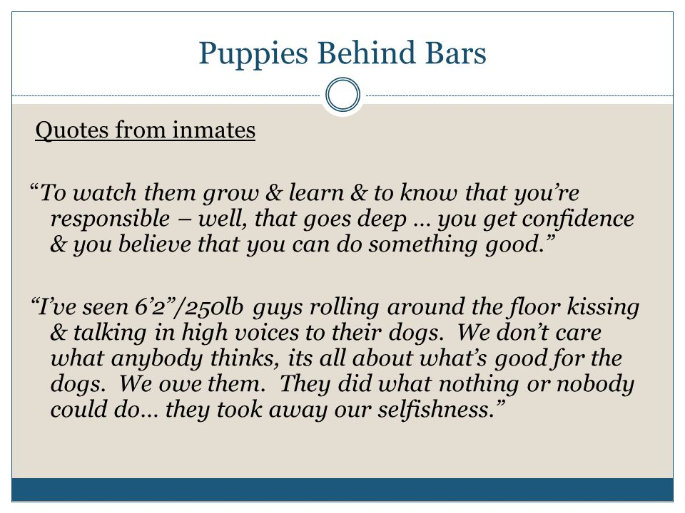 "Puppies Behind Bars Quotes from inmates ""To watch them grow & learn & to know that you're responsible – well, that goes deep … you get confidence & yo"