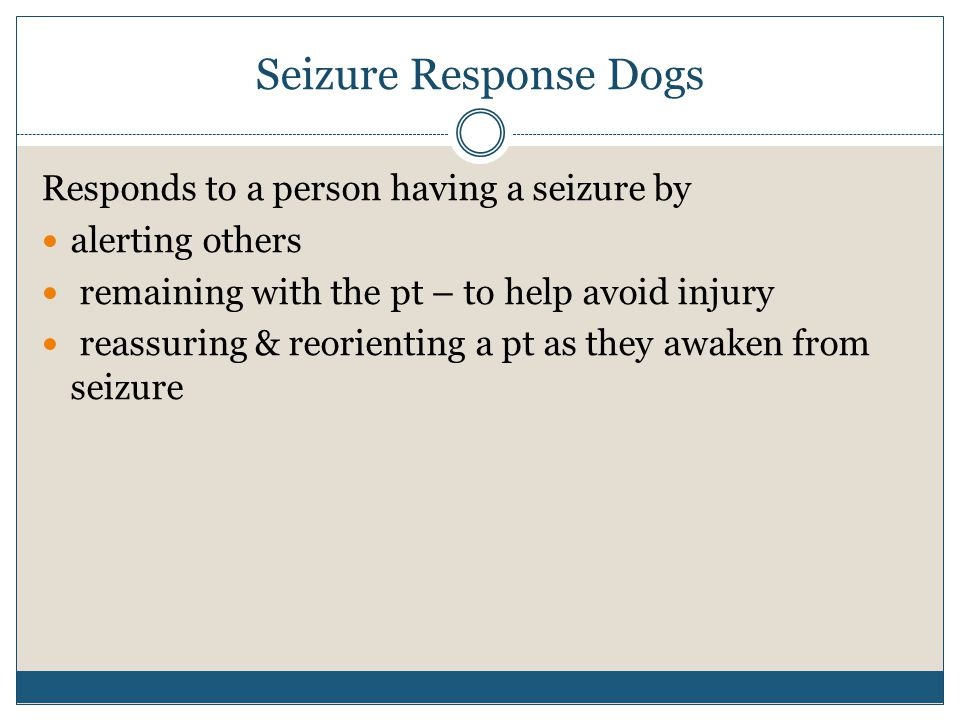 Seizure Response Dogs Responds to a person having a seizure by alerting others remaining with the pt – to help avoid injury reassuring & reorienting a