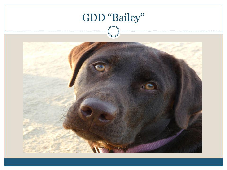 GDD Bailey