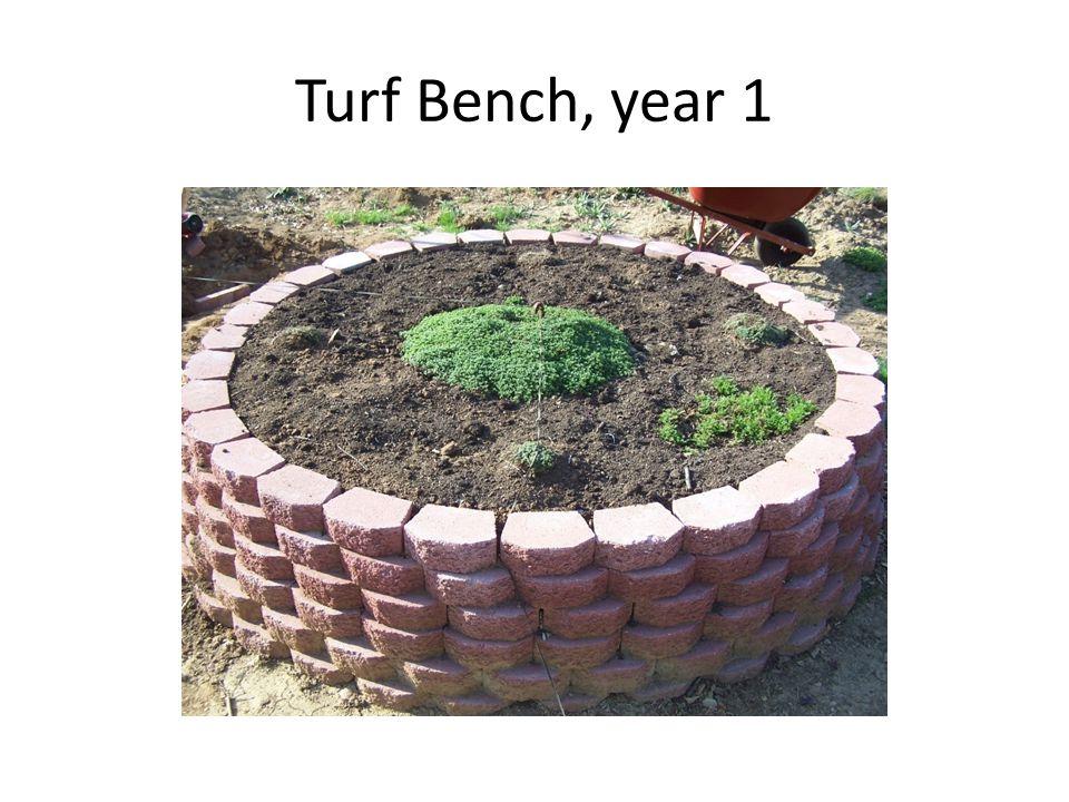 Turf Bench, year 2