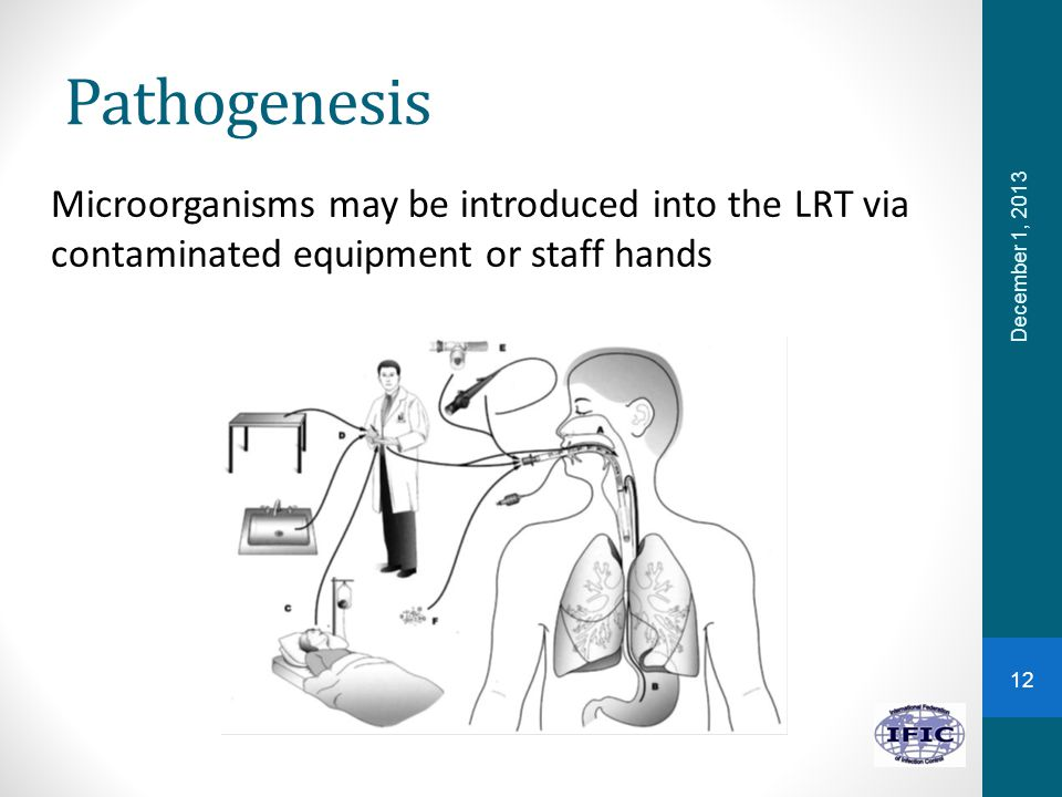 Pathogenesis Microorganisms may be introduced into the LRT via contaminated equipment or staff hands December 1, 2013 12