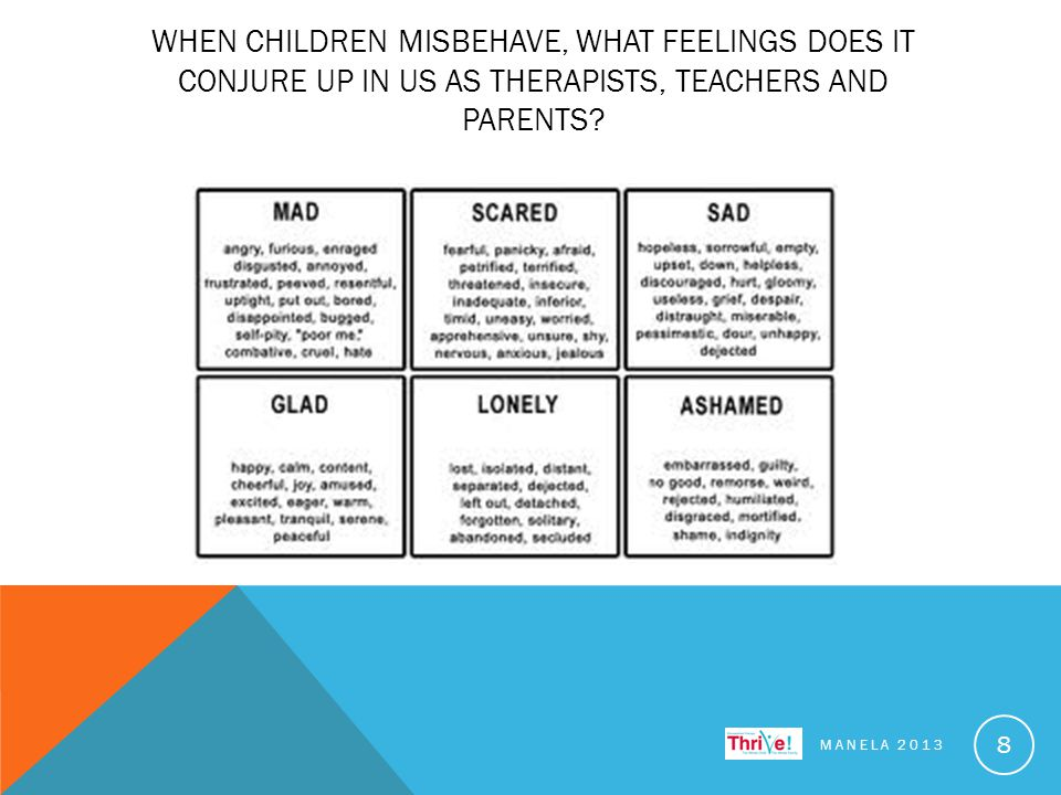 WHEN CHILDREN MISBEHAVE, WHAT FEELINGS DOES IT CONJURE UP IN US AS THERAPISTS, TEACHERS AND PARENTS.