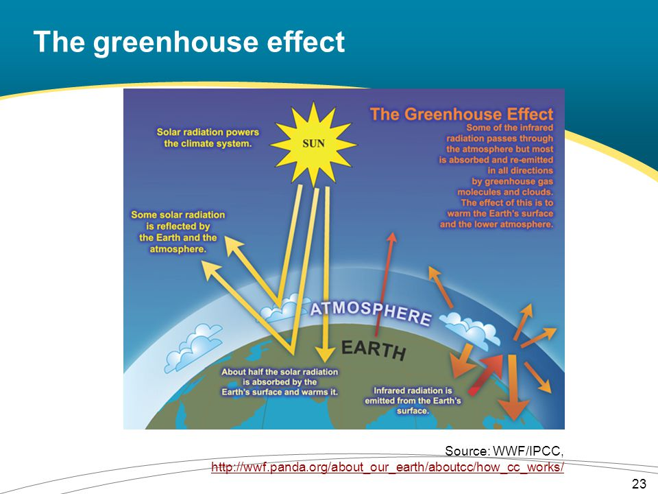 The greenhouse effect 23 Source: WWF/IPCC, http://wwf.panda.org/about_our_earth/aboutcc/how_cc_works/ http://wwf.panda.org/about_our_earth/aboutcc/how_cc_works/