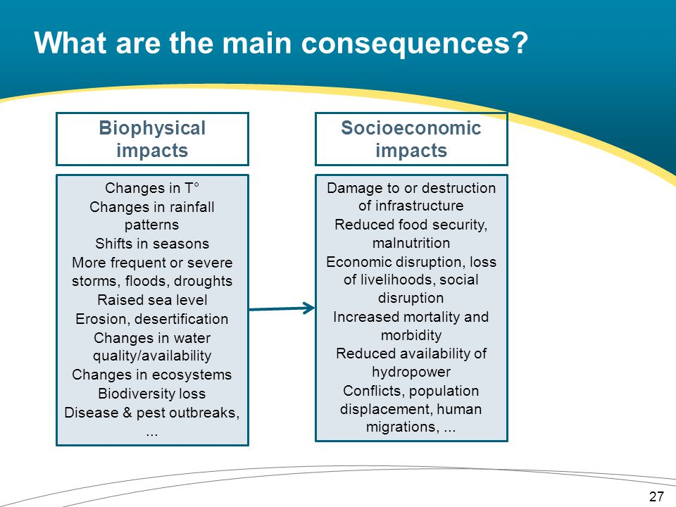 What are the main consequences.
