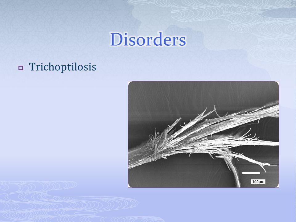  Trichoptilosis