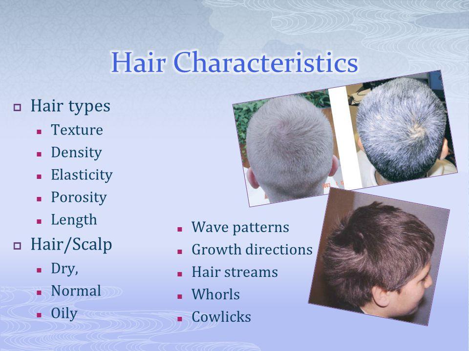  Hair types Texture Density Elasticity Porosity Length  Hair/Scalp Dry, Normal Oily Wave patterns Growth directions Hair streams Whorls Cowlicks