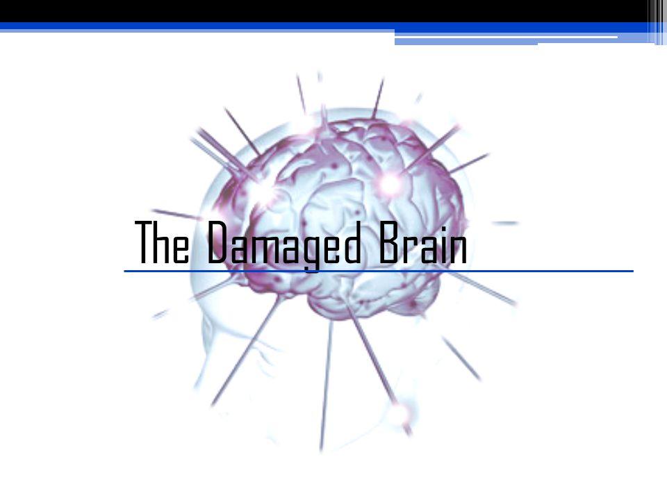 The Damaged Brain