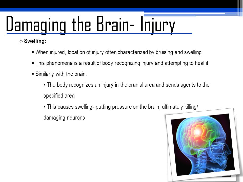 Damaging the Brain- Injury o Swelling:  When injured, location of injury often characterized by bruising and swelling  This phenomena is a result of
