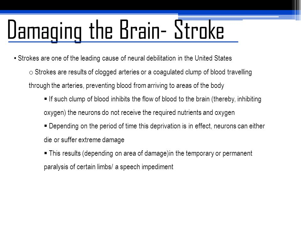 Damaging the Brain- Stroke Strokes are one of the leading cause of neural debilitation in the United States o Strokes are results of clogged arteries or a coagulated clump of blood travelling through the arteries, preventing blood from arriving to areas of the body  If such clump of blood inhibits the flow of blood to the brain (thereby, inhibiting oxygen) the neurons do not receive the required nutrients and oxygen  Depending on the period of time this deprivation is in effect, neurons can either die or suffer extreme damage  This results (depending on area of damage)in the temporary or permanent paralysis of certain limbs/ a speech impediment