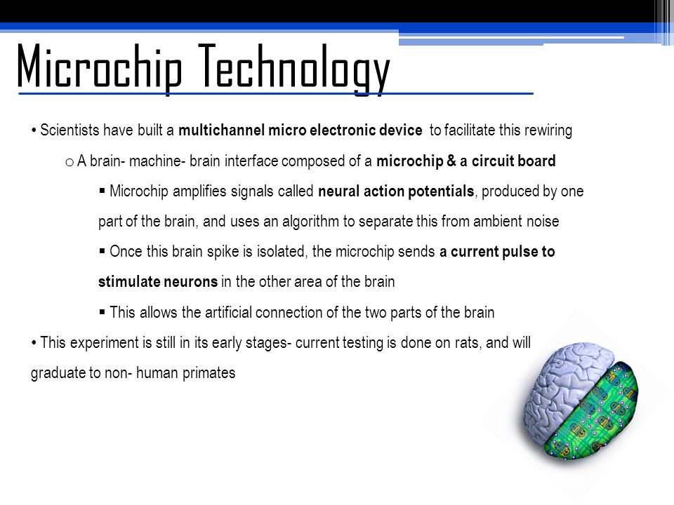Microchip Technology Scientists have built a multichannel micro electronic device to facilitate this rewiring o A brain- machine- brain interface comp