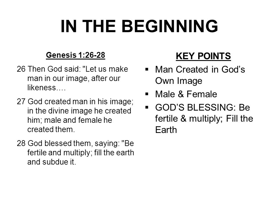 IN THE BEGINNING Genesis 1:26-28 26 Then God said: