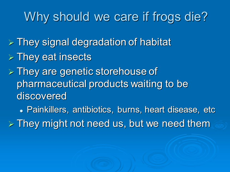 Why should we care if frogs die?  They signal degradation of habitat  They eat insects  They are genetic storehouse of pharmaceutical products wait