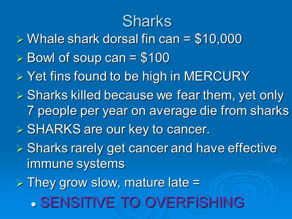 Sharks  Whale shark dorsal fin can = $10,000  Bowl of soup can = $100  Yet fins found to be high in MERCURY  Sharks killed because we fear them, y
