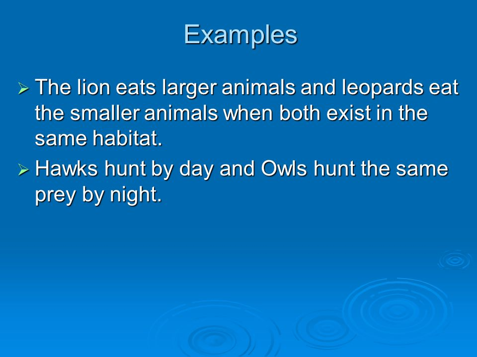 Examples  The lion eats larger animals and leopards eat the smaller animals when both exist in the same habitat.  Hawks hunt by day and Owls hunt th