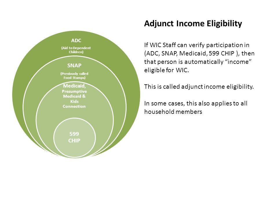 If WIC Staff can verify participation in (ADC, SNAP, Medicaid, 599 CHIP ), then that person is automatically income eligible for WIC.