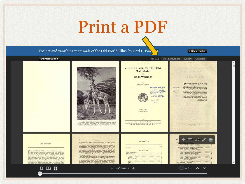 Print a PDF