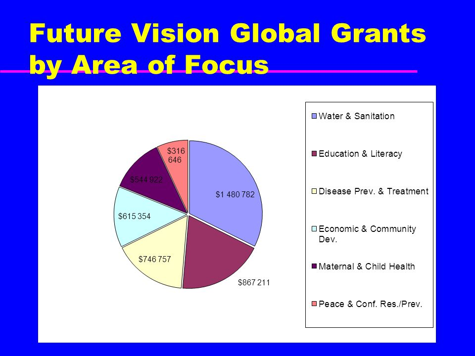 Future Vision Global Grants by Area of Focus