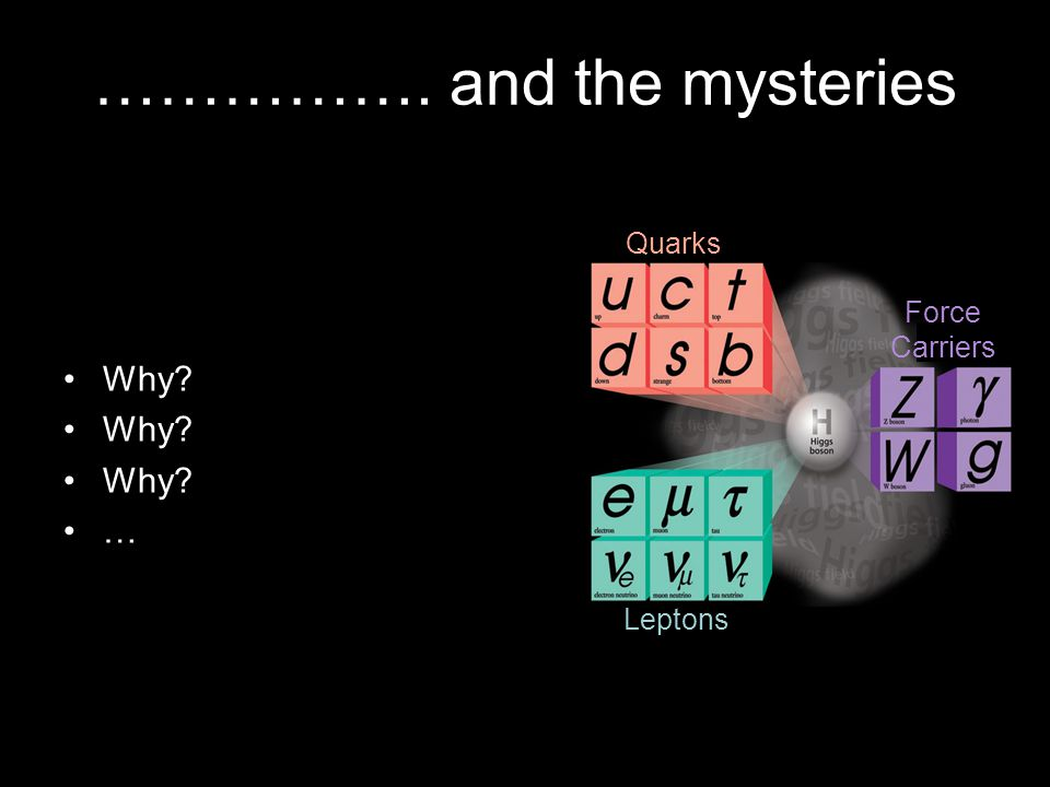……………. and the mysteries Quarks Leptons Force Carriers Why? …