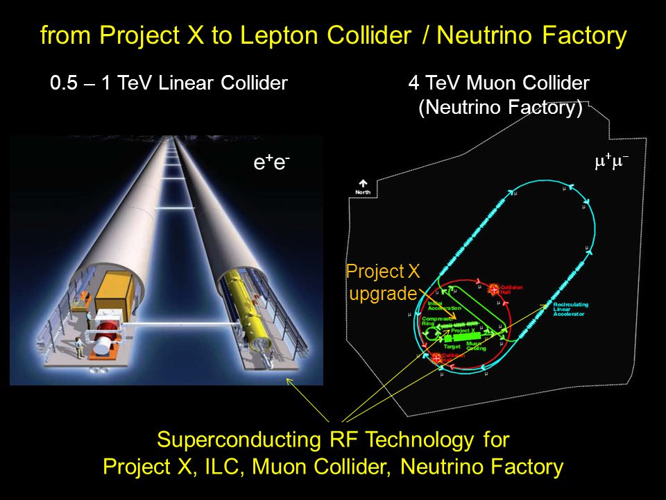 0.5 – 1 TeV Linear Collider 4 TeV Muon Collider (Neutrino Factory) Superconducting RF Technology for Project X, ILC, Muon Collider, Neutrino Factory Project X upgrade from Project X to Lepton Collider / Neutrino Factory e+e-e+e- 