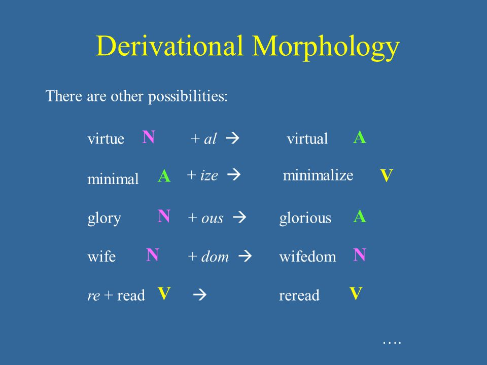Derivational Morphology There are other possibilities: virtue N + al  virtual A minimal A + ize  minimalize V re + read V  reread V glory N + ous  glorious A wife N + dom  wifedom N ….