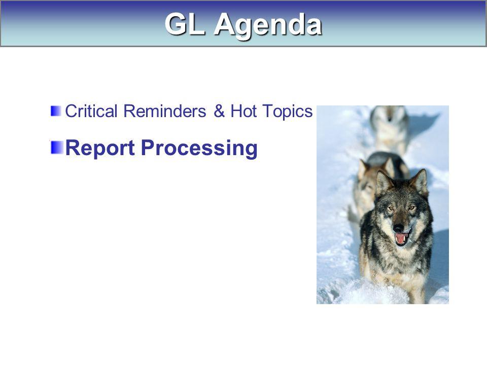 Critical Reminders & Hot Topics Report Processing GL Agenda