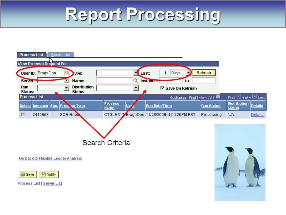 Search Criteria Report Processing