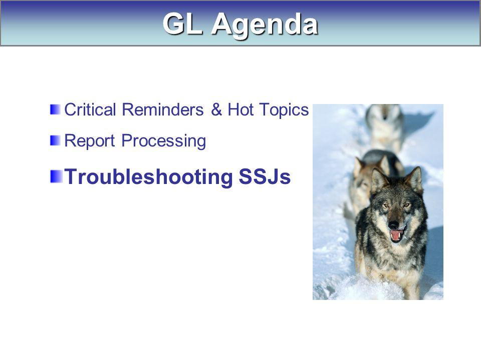 Critical Reminders & Hot Topics Report Processing Troubleshooting SSJs GL Agenda