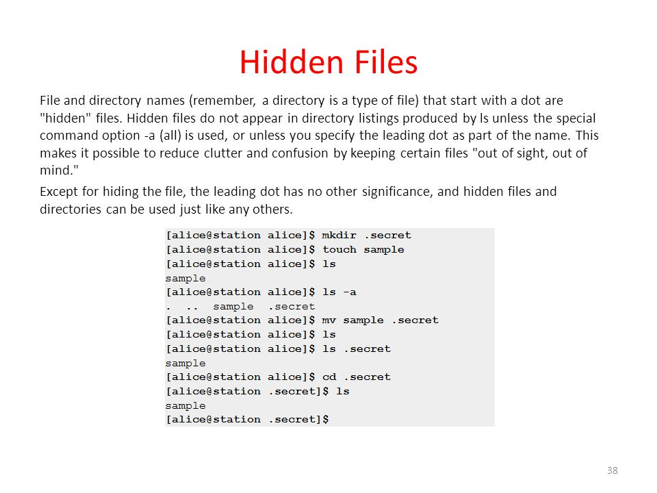 Hidden Files File and directory names (remember, a directory is a type of file) that start with a dot are hidden files.