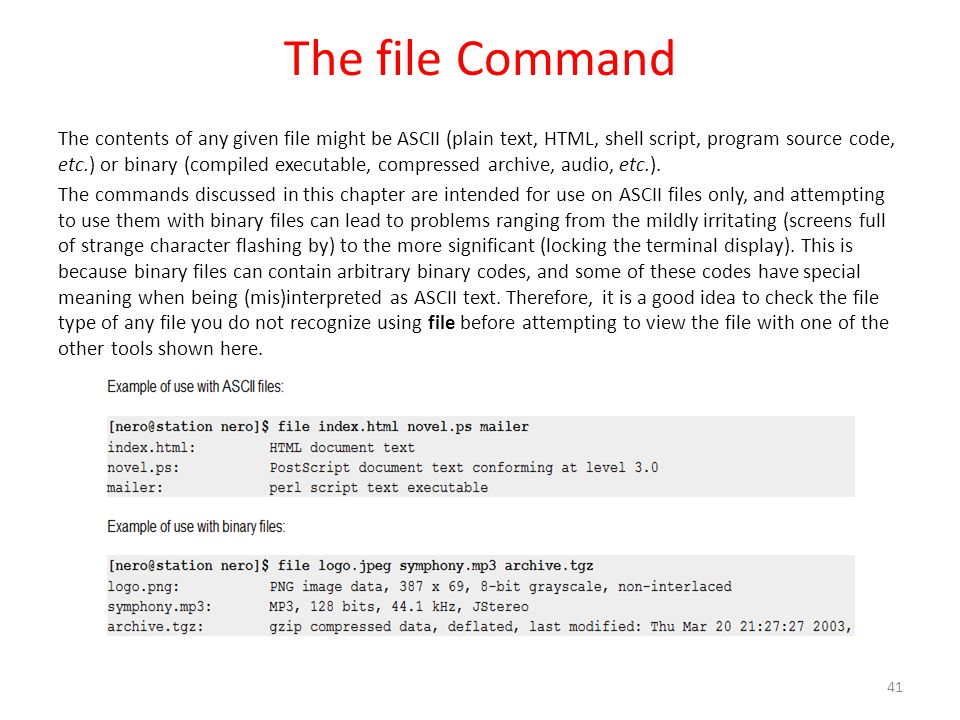 The file Command The contents of any given file might be ASCII (plain text, HTML, shell script, program source code, etc.) or binary (compiled executable, compressed archive, audio, etc.).