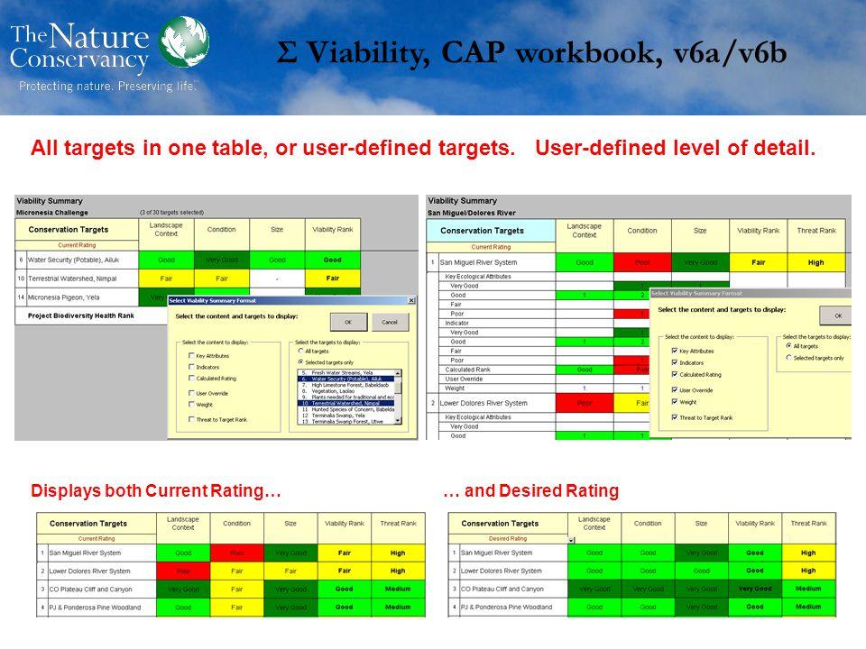 Σ Viability, CAP workbook, v6a/v6b All targets in one table, or user-defined targets.