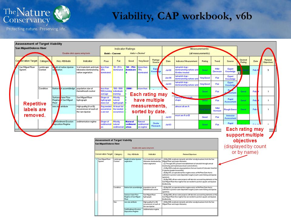 Viability, CAP workbook, v6b Repetitive labels are removed.