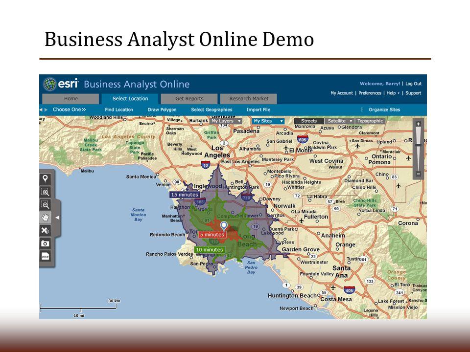Business Analyst Online Demo