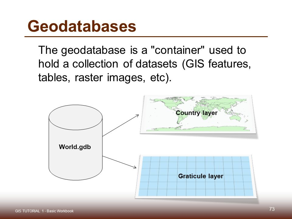 Geodatabases The geodatabase is a