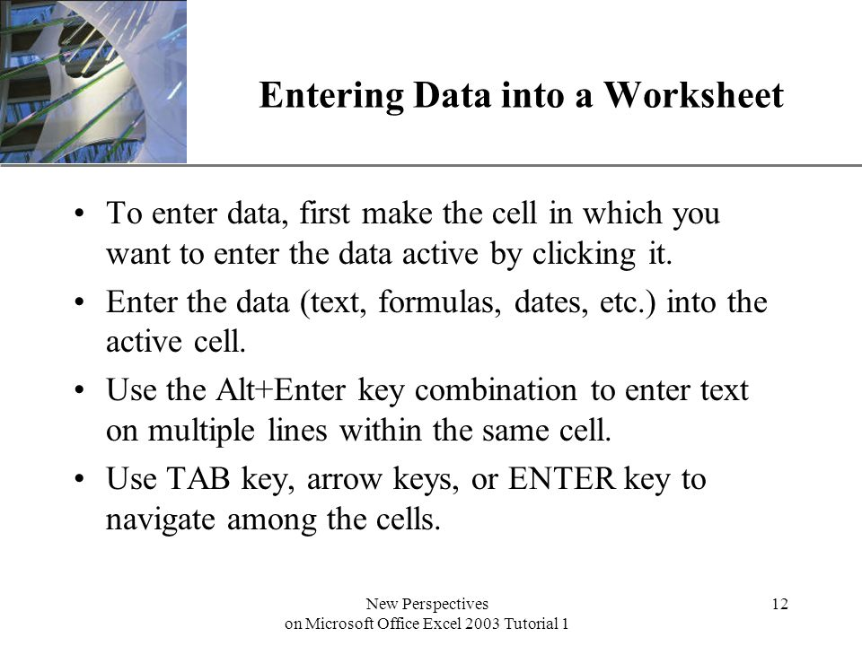 XP New Perspectives on Microsoft Office Excel 2003 Tutorial 1 12 Entering Data into a Worksheet To enter data, first make the cell in which you want to enter the data active by clicking it.