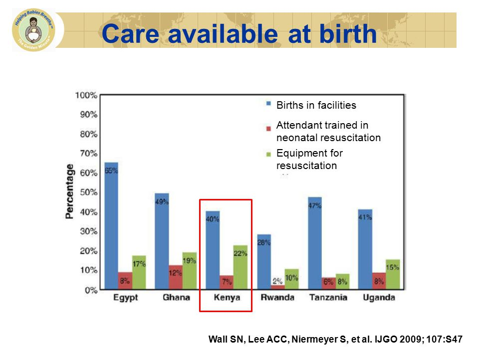 Care available at birth Births in facilities Attendant trained in neonatal resuscitation Equipment for resuscitation Wall SN, Lee ACC, Niermeyer S, et al.