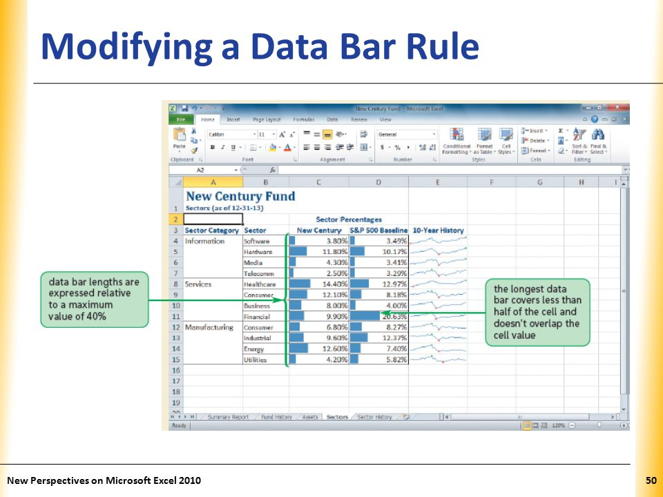 XP Modifying a Data Bar Rule New Perspectives on Microsoft Excel 201050