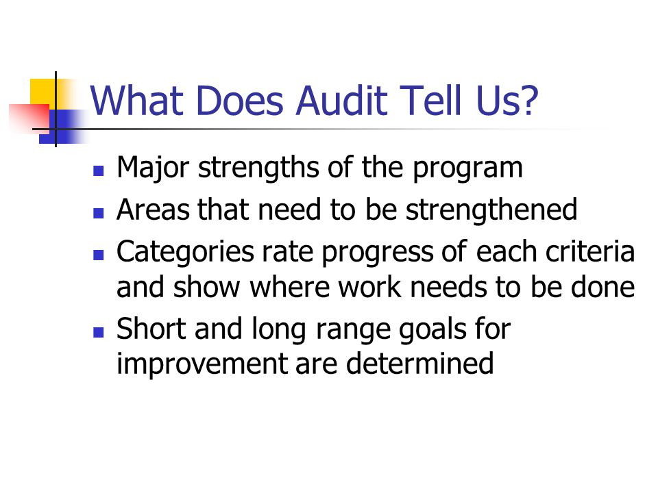 What Does Audit Tell Us? Major strengths of the program Areas that need to be strengthened Categories rate progress of each criteria and show where wo