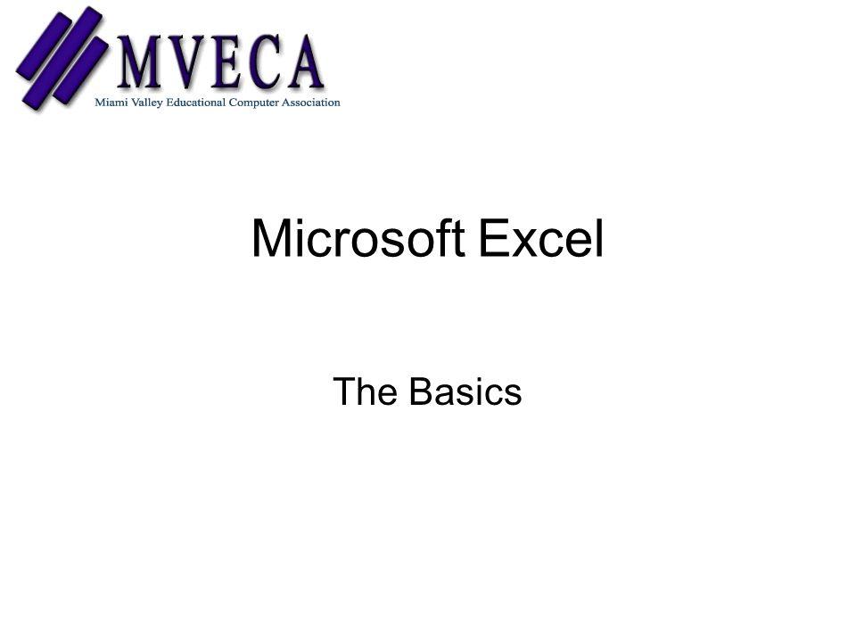 Microsoft Excel The Basics