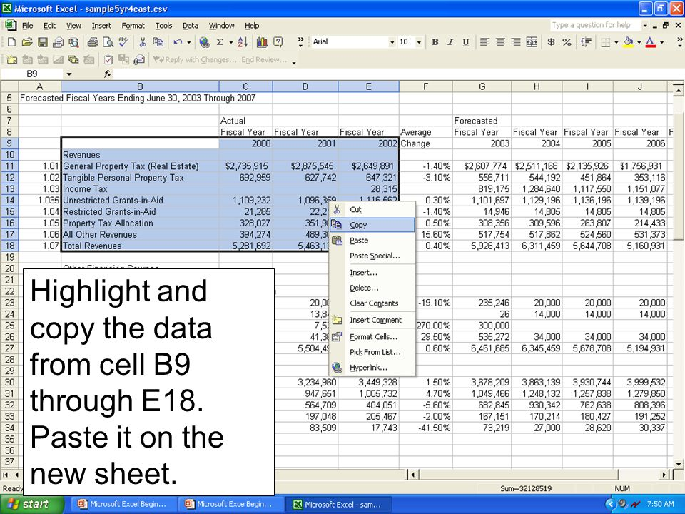Highlight and copy the data from cell B9 through E18. Paste it on the new sheet.