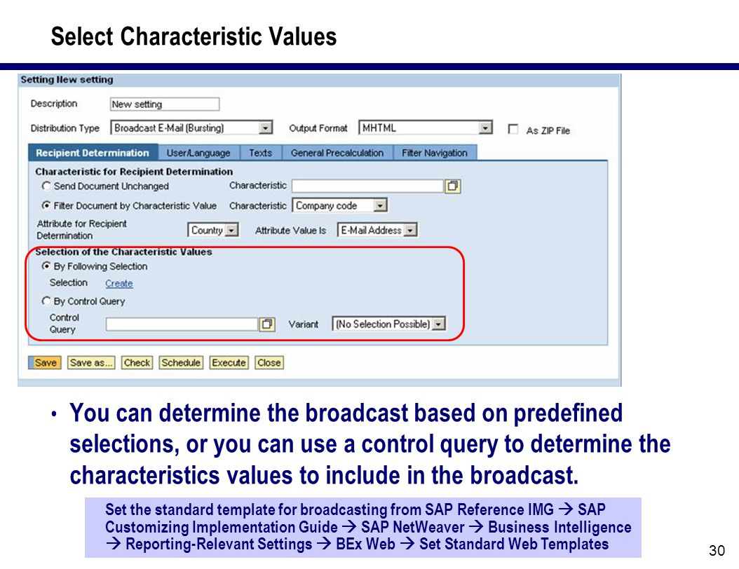 30 Select Characteristic Values You can determine the broadcast based on predefined selections, or you can use a control query to determine the characteristics values to include in the broadcast.