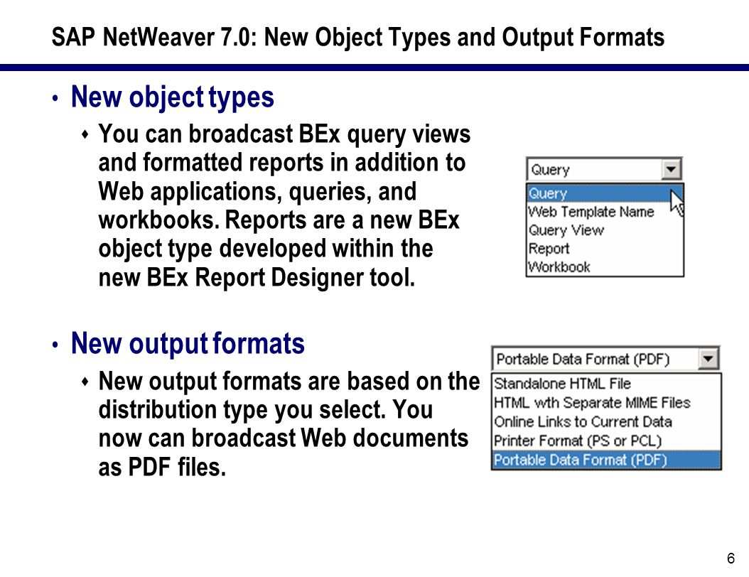 SAP NetWeaver 7.0: New Object Types and Output Formats New object types  You can broadcast BEx query views and formatted reports in addition to Web applications, queries, and workbooks.