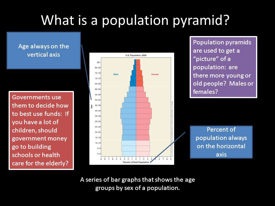What is a population pyramid? A series of bar graphs that shows the age groups by sex of a population. Age always on the vertical axis Percent of popu