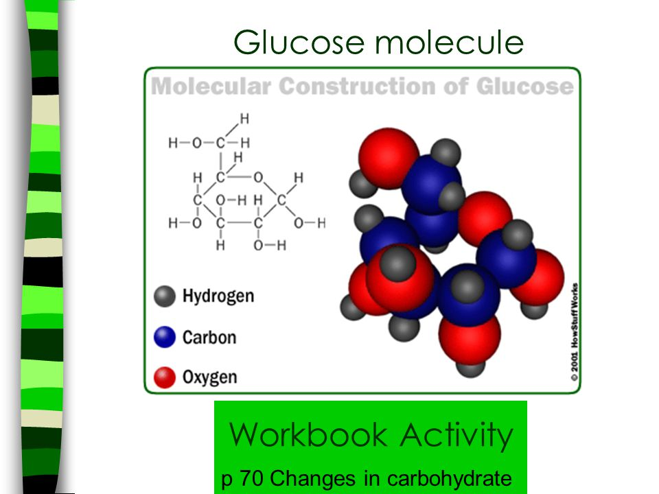 Glucose molecule Workbook Activity p 70 Changes in carbohydrate