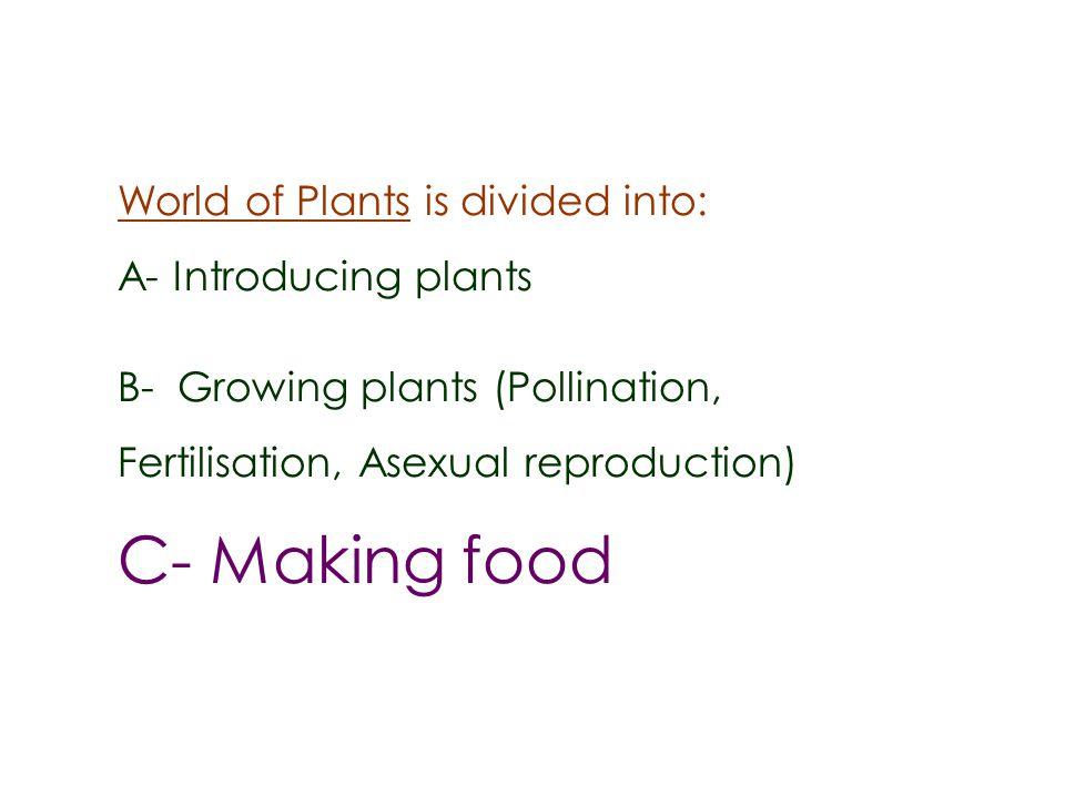 Xylem & phloem in stem Workbook Activity p 60 Water transport in plants BioviewersBox 78 The stem of a flowering plant