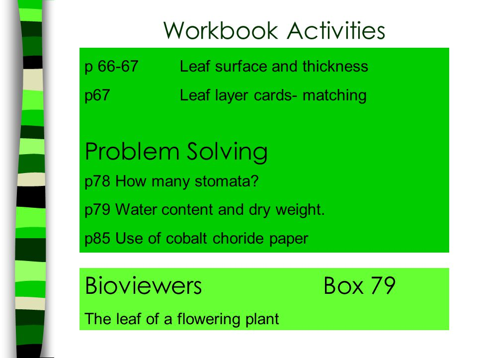Workbook Activities p 66-67Leaf surface and thickness p67Leaf layer cards- matching Problem Solving p78 How many stomata? p79 Water content and dry we